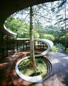 patio-maison-moderne-arbre