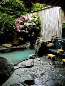 petit-jardin-alpestre-zan