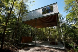 modern-lofted-tree-house