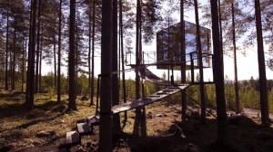 06cabane-arbre