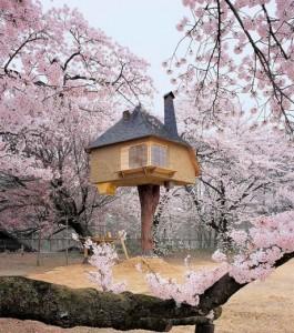l-artiste-teronobu-fujimori-a-cree-cette-maison-originale-qui-semble-etre-un-veritable-havre-de-paix_120301_w460