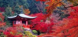 Daigo-ji-à-Kyoto-Japon