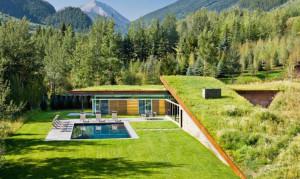 gluck_green_roof1