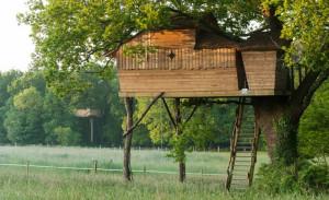 cabane_dans_les_arbres_sterenn_2
