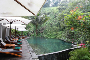 Infinity-Pool-at-Maya-Ubud-Overlooking-the-Forest