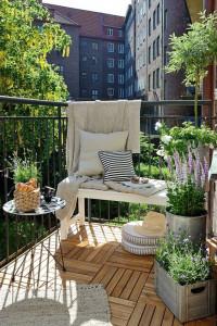 7979-maly-balkonowy-ogrod