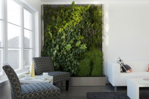 844159-mur-vegetal-maison-modle-collections